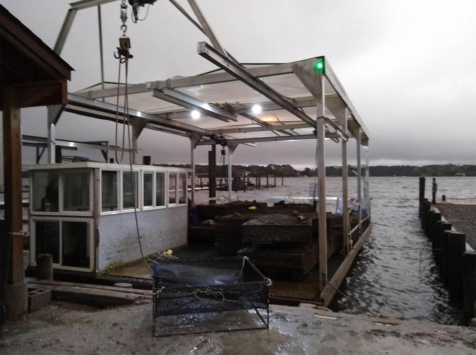 Ward Oyster Company - Aquaculture Oyster Farm - Gloucester Virginia - Quality Seafood